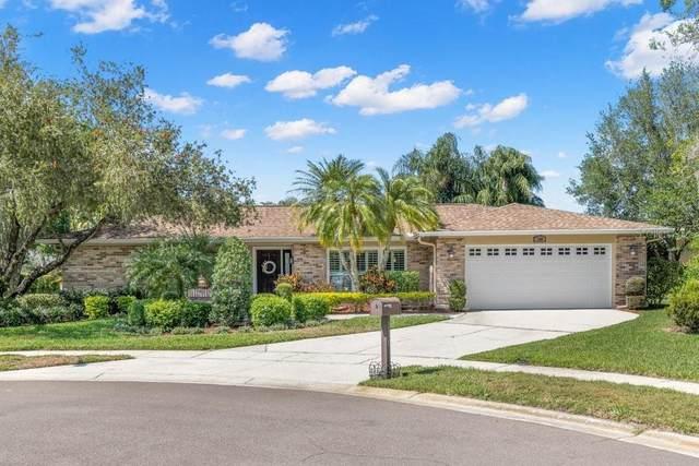 130 Pine Lake Drive, Oldsmar, FL 34677 (MLS #U8118982) :: RE/MAX Marketing Specialists