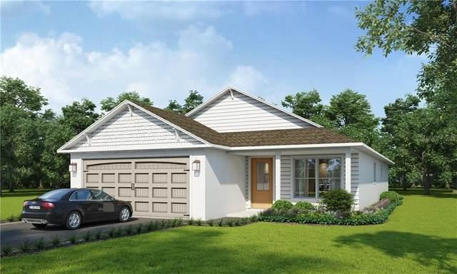 2702 Union St S, St Petersburg, FL 33712 (MLS #U8119130) :: Armel Real Estate