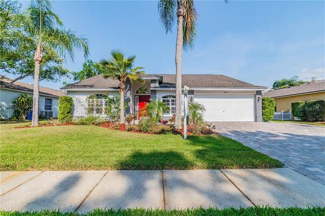 19627 Wyndmill Circle, Odessa, FL 33556 (MLS #U8119167) :: Griffin Group