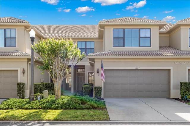 4887 Silverback Court, Palm Harbor, FL 34684 (MLS #U8119346) :: McConnell and Associates