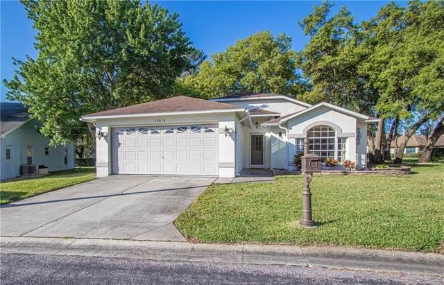 10818 Brookhaven Drive, New Port Richey, FL 34654 (MLS #U8119353) :: Griffin Group
