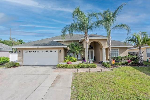 2384 Lilac Drive, Palm Harbor, FL 34683 (MLS #U8119418) :: Dalton Wade Real Estate Group