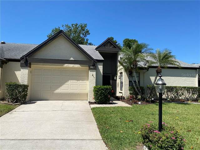 3489 E Woodmont Way, Palm Harbor, FL 34684 (MLS #U8119489) :: Rabell Realty Group