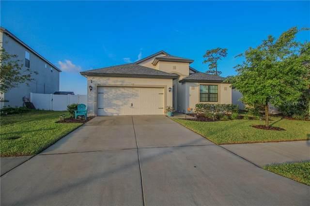 399 Old Windsor Way, Spring Hill, FL 34609 (MLS #U8119526) :: Griffin Group