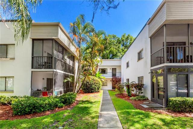 2375 Fox Chase Boulevard #248, Palm Harbor, FL 34683 (MLS #U8119617) :: Burwell Real Estate