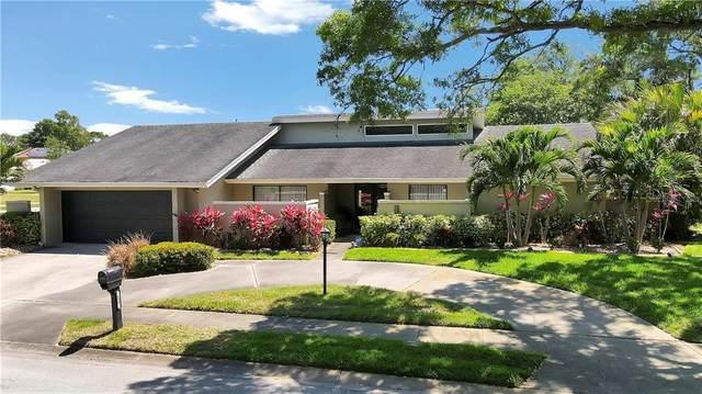 604 Knollwood Drive, Largo, FL 33770 (MLS #U8119660) :: RE/MAX Local Expert
