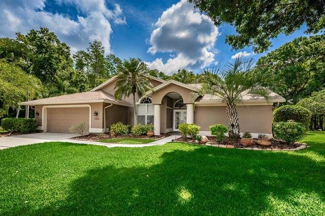3354 Wedgewood Way, Tarpon Springs, FL 34688 (MLS #U8119664) :: Team Borham at Keller Williams Realty