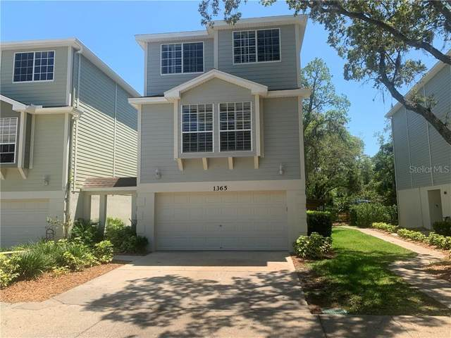 1365 Curlew Road, Dunedin, FL 34698 (MLS #U8119670) :: Frankenstein Home Team