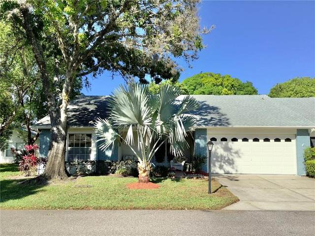 11006 Sandtrap Drive, Port Richey, FL 34668 (MLS #U8119699) :: Frankenstein Home Team
