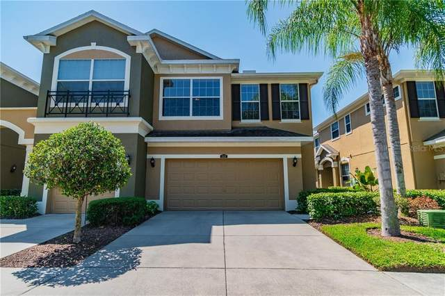 12639 Silverdale Street, Tampa, FL 33626 (MLS #U8119711) :: Griffin Group