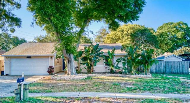 1191 Mineola Circle, Palm Harbor, FL 34683 (MLS #U8119747) :: Burwell Real Estate