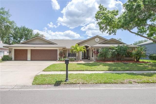 4730 Brayton Terrace N, Palm Harbor, FL 34685 (MLS #U8119756) :: New Home Partners
