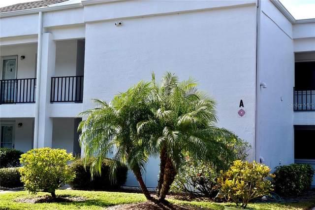 2060 Marilyn Street #211, Clearwater, FL 33765 (MLS #U8119793) :: Griffin Group