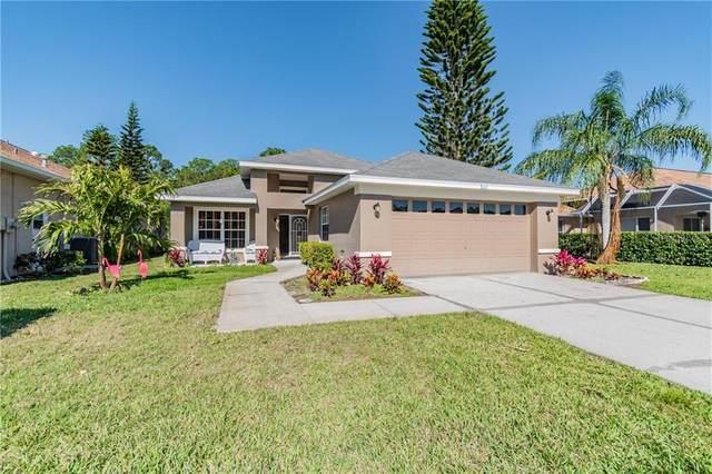 1601 Boswell Lane, New Port Richey, FL 34655 (MLS #U8119801) :: Griffin Group