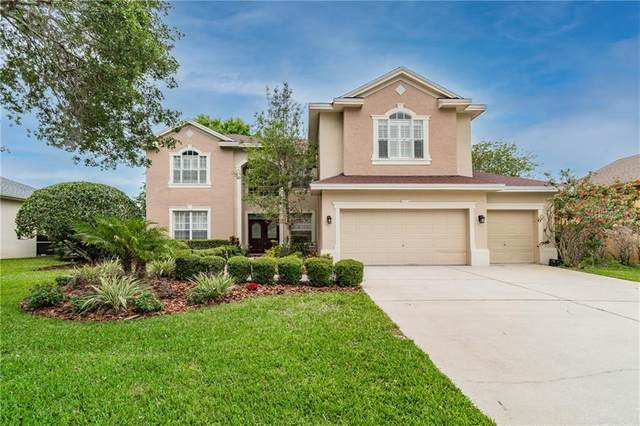 5458 Lockport Court, Palm Harbor, FL 34685 (MLS #U8119818) :: RE/MAX Marketing Specialists