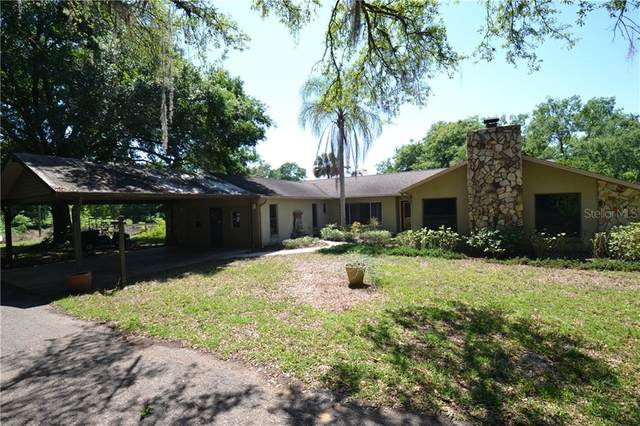 36634 Blanton Road, Dade City, FL 33523 (MLS #U8119837) :: The Price Group
