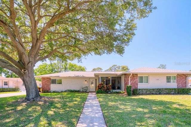 1009 Queen Anne Drive A, Palm Harbor, FL 34684 (MLS #U8119850) :: Coldwell Banker Vanguard Realty