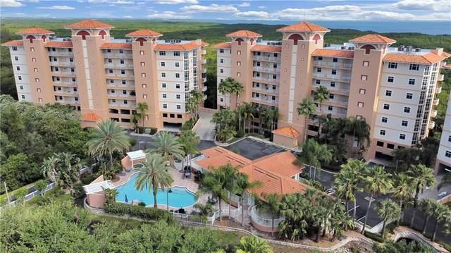 12033 Gandy Boulevard N #131, St Petersburg, FL 33702 (MLS #U8119942) :: Gate Arty & the Group - Keller Williams Realty Smart