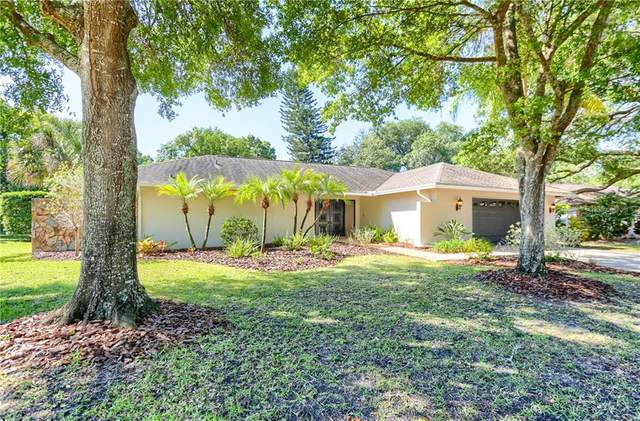 2272 Toniwood Lane, Palm Harbor, FL 34685 (MLS #U8119979) :: Burwell Real Estate