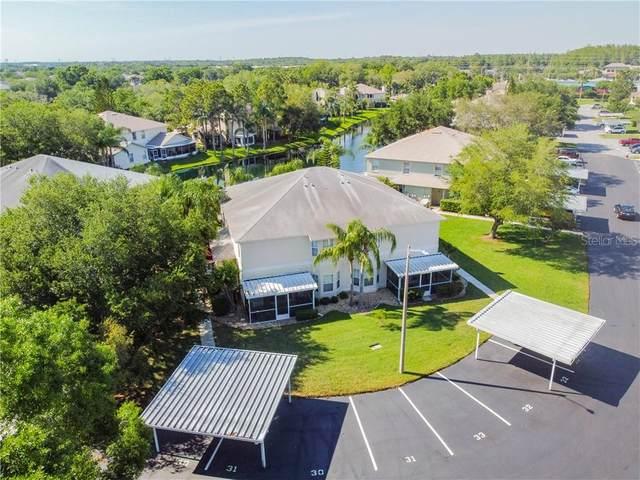 30 Emerald Bay Drive, Oldsmar, FL 34677 (MLS #U8120022) :: RE/MAX Marketing Specialists