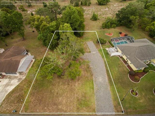 2373 Glenridge Drive, Spring Hill, FL 34609 (MLS #U8120101) :: Bustamante Real Estate