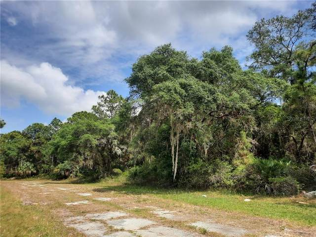 Trolley Road, North Port, FL 34291 (MLS #U8120145) :: Realty Executives in The Villages