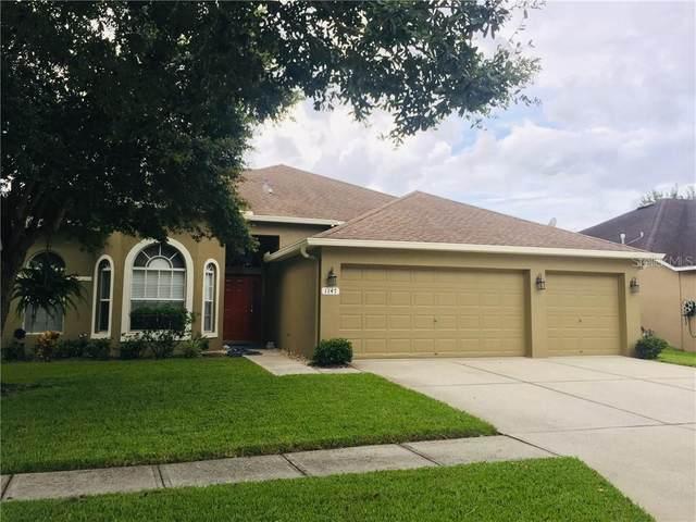 1147 Big Creek Drive, Wesley Chapel, FL 33544 (MLS #U8120163) :: Team Bohannon Keller Williams, Tampa Properties