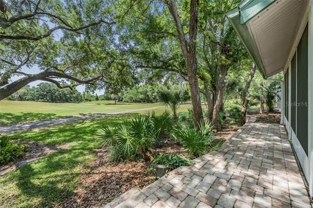 60 Woodridge Court, Oldsmar, FL 34677 (MLS #U8120182) :: RE/MAX Marketing Specialists