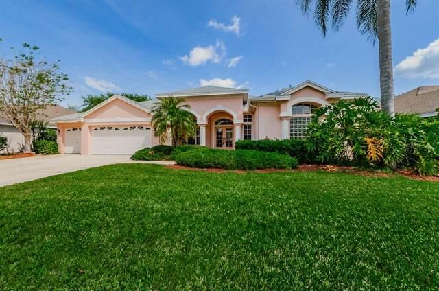 4531 Serenity Trail, Palm Harbor, FL 34685 (MLS #U8120222) :: RE/MAX Marketing Specialists
