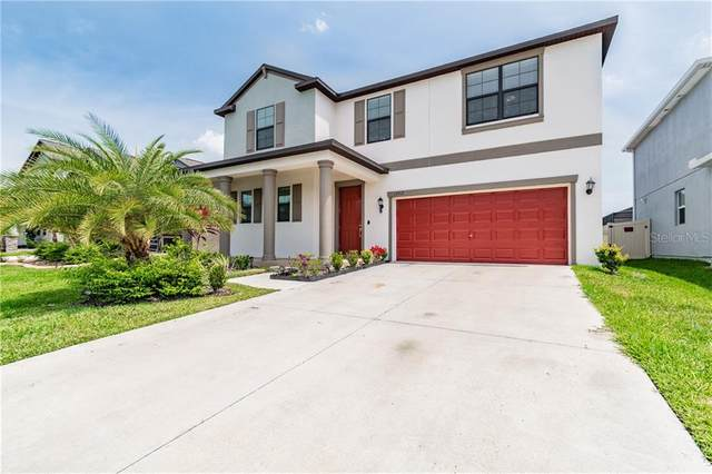 13912 Roseate Tern Lane, Riverview, FL 33579 (MLS #U8120233) :: Everlane Realty