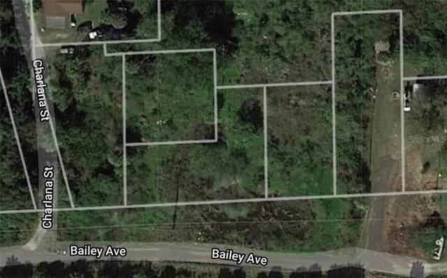 2910 Bailey Avenue, Punta Gorda, FL 33950 (MLS #U8120250) :: Zarghami Group