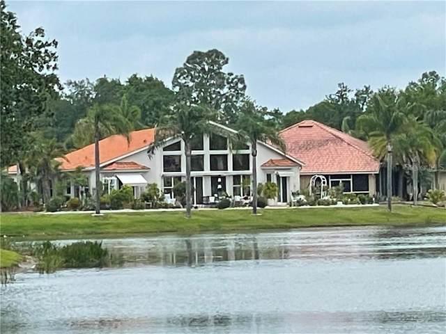 6842 Cancun Court, Land O Lakes, FL 34637 (MLS #U8120261) :: Vacasa Real Estate