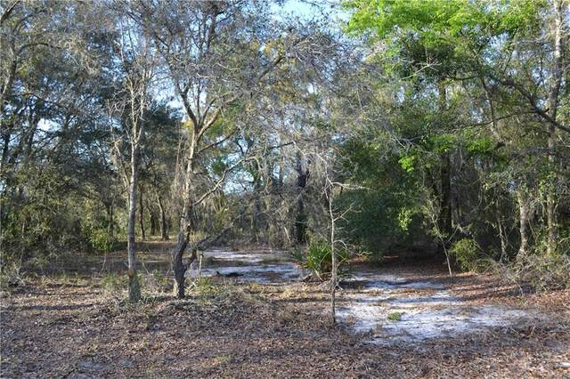 Sharon Street, Hudson, FL 34669 (MLS #U8120301) :: Armel Real Estate