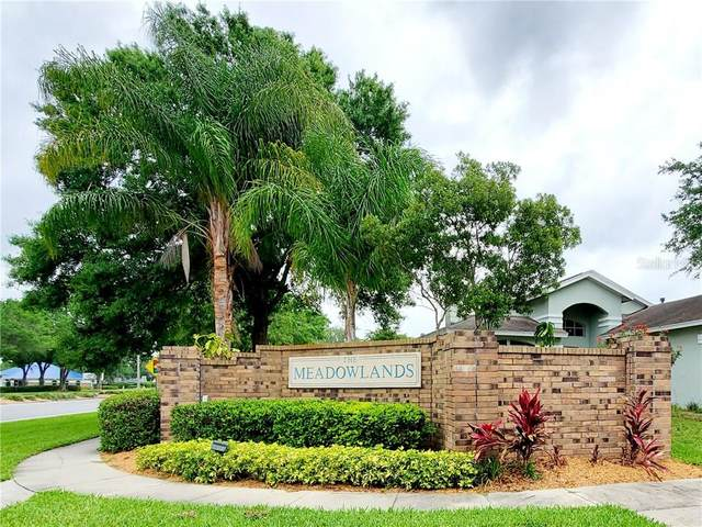 28445 Tall Grass Drive, Wesley Chapel, FL 33543 (MLS #U8120303) :: Lockhart & Walseth Team, Realtors