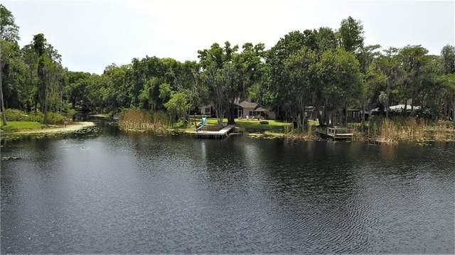 14631 Middlefield Lane, Odessa, FL 33556 (MLS #U8120317) :: Gate Arty & the Group - Keller Williams Realty Smart