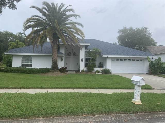 904 Belted Kingfisher Drive S, Palm Harbor, FL 34683 (MLS #U8120323) :: SunCoast Home Experts