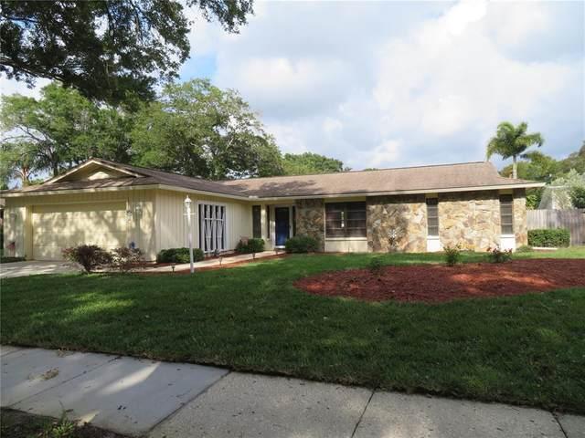 2551 Knotty Pine Way, Clearwater, FL 33761 (MLS #U8120324) :: Team Borham at Keller Williams Realty