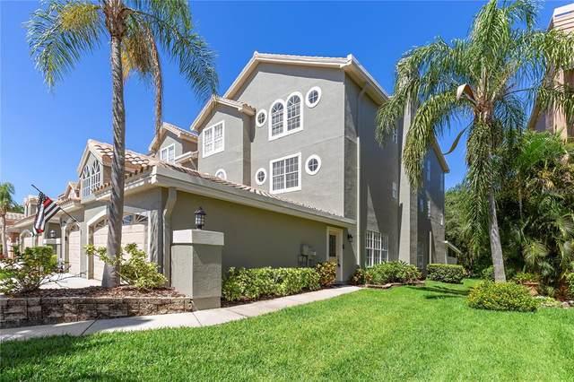 1676 Arabian Lane, Palm Harbor, FL 34685 (MLS #U8120358) :: Pepine Realty