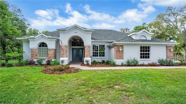 12842 Oakeller Drive, Hudson, FL 34667 (MLS #U8120402) :: Vacasa Real Estate