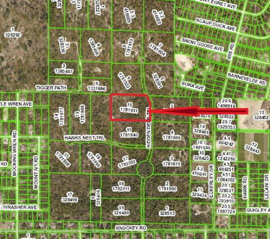 Hidden Deer Trail, Brooksville, FL 34614 (MLS #U8120462) :: Sarasota Property Group at NextHome Excellence
