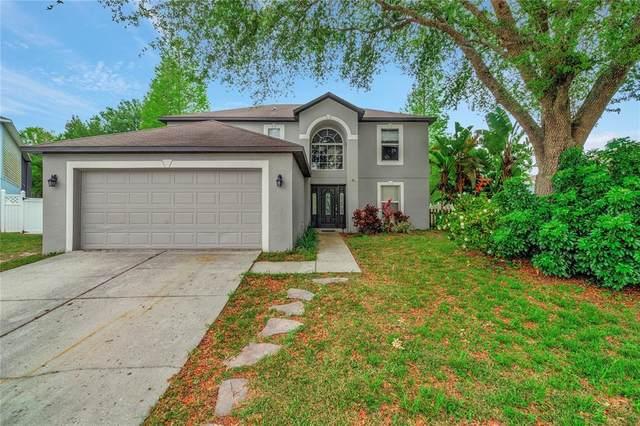 3123 Anne Jolley Court, Land O Lakes, FL 34639 (MLS #U8120468) :: Vacasa Real Estate
