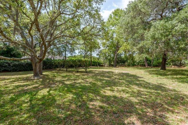 Spring Hill, FL 34608 :: The Brenda Wade Team