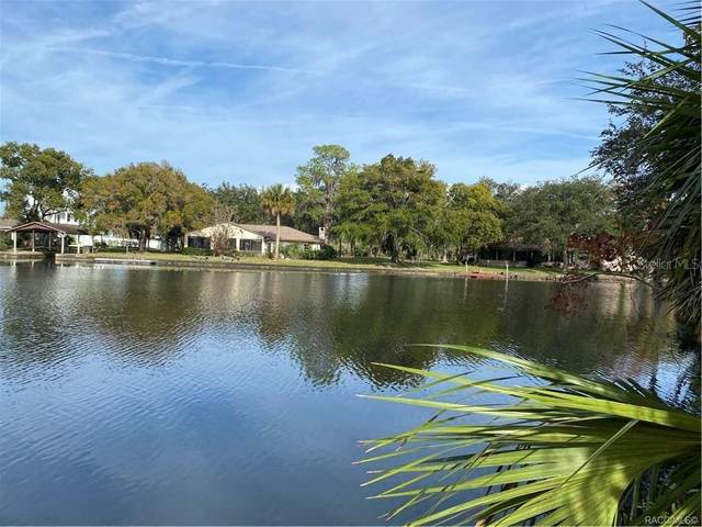10453 W Sea Drive, Crystal River, FL 34429 (MLS #U8120513) :: Armel Real Estate