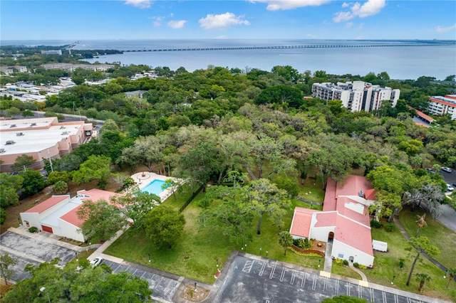 1009 Pearce Drive #311, Clearwater, FL 33764 (MLS #U8120558) :: Coldwell Banker Vanguard Realty