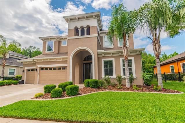 19329 Autumn Chase Court, Land O Lakes, FL 34638 (MLS #U8120579) :: Vacasa Real Estate
