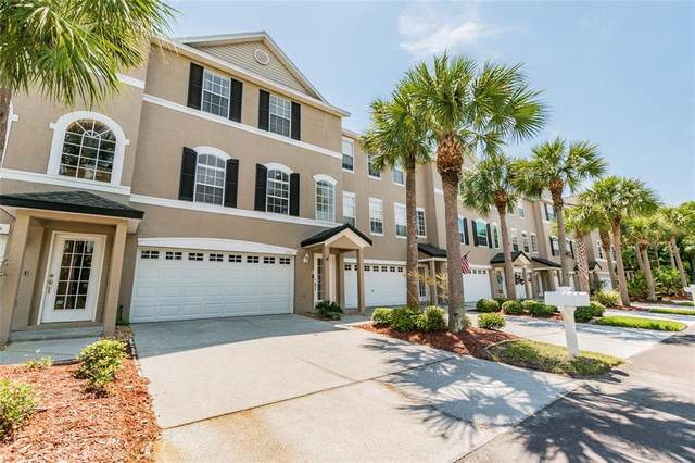 3151 Oyster Bayou Way, Clearwater, FL 33759 (MLS #U8120659) :: Everlane Realty