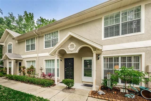 2879 Thaxton Drive #58, Palm Harbor, FL 34684 (#U8120766) :: Caine Luxury Team