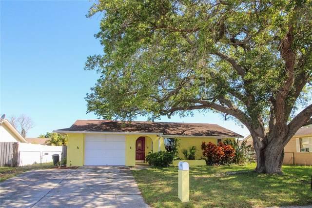 6653 Ridge Crest Drive, Port Richey, FL 34668 (MLS #U8120807) :: The Hesse Team