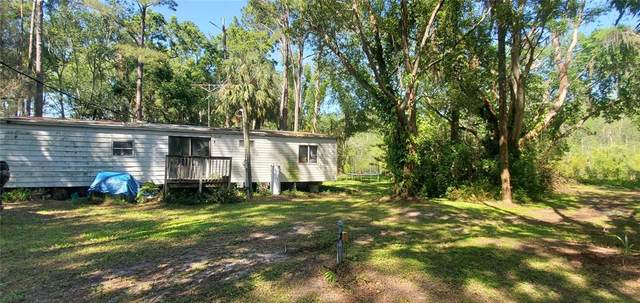 7408 Tom Drive, Land O Lakes, FL 34638 (MLS #U8120855) :: Premier Home Experts