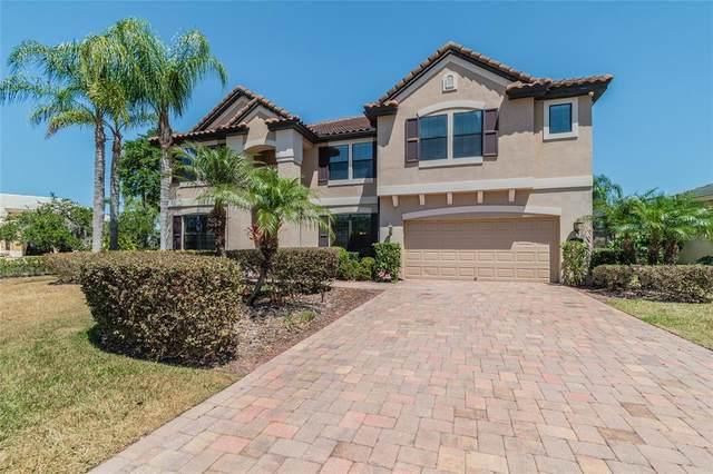 17911 Saint Croix Isle Drive, Tampa, FL 33647 (MLS #U8120865) :: The Lersch Group